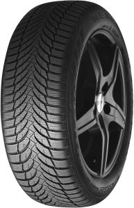 Зимние шины Nexen (Roadstone) Winguard Snow G WH2